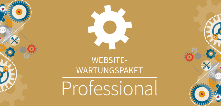 Website Wartungspaket Professional