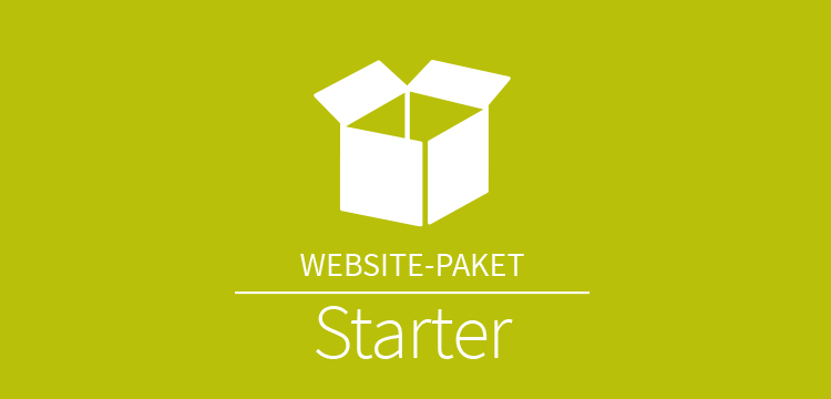 Website Paket Starter
